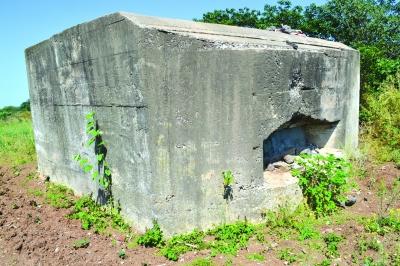 隐秘的碉堡诉说英雄城市抗战史
