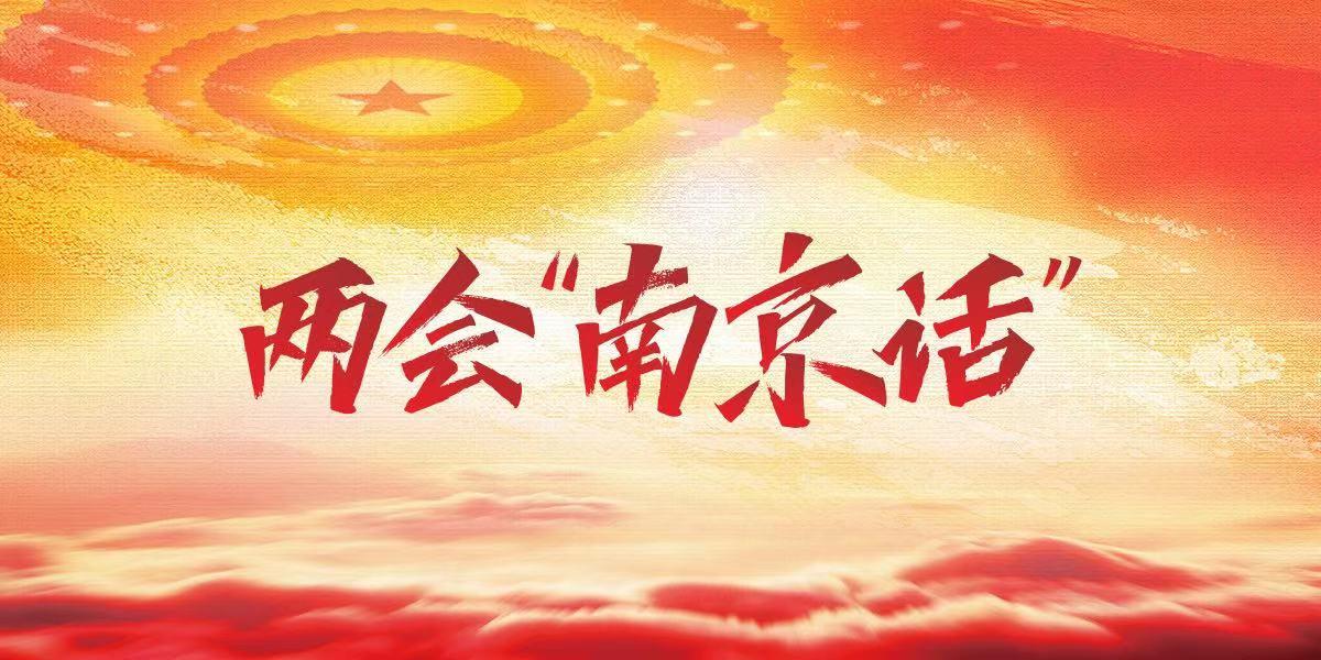 """两会""""南京话"""""""
