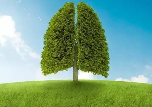 关于肺癌那些广为流传的谣言,千万别信!