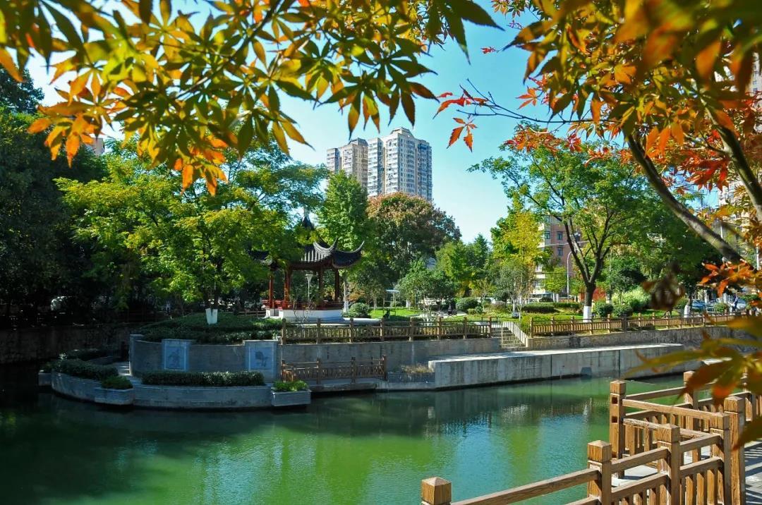 经过环境综合整治的金川河水清河畅景美,成为一条景观河。 南报融媒体记者 杜文双摄
