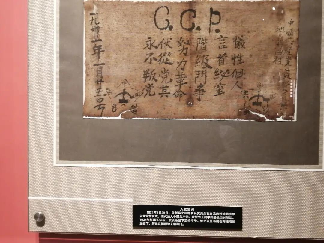 农民党员贺页朵在红布上写下的入党誓词。南报融媒体记者苍淑珺摄