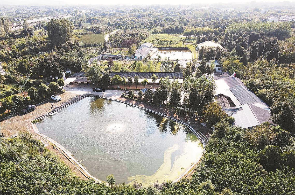 坐落在水墨大埝景区内的丰乐家庭农场。南报融媒体记者 邓建鹰 摄