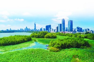 近年来,通过湖体疏浚、建设生态湿地等持续性生态治理,玄武湖水质越发清澈,湖区生态系统形成良性循环。常成摄