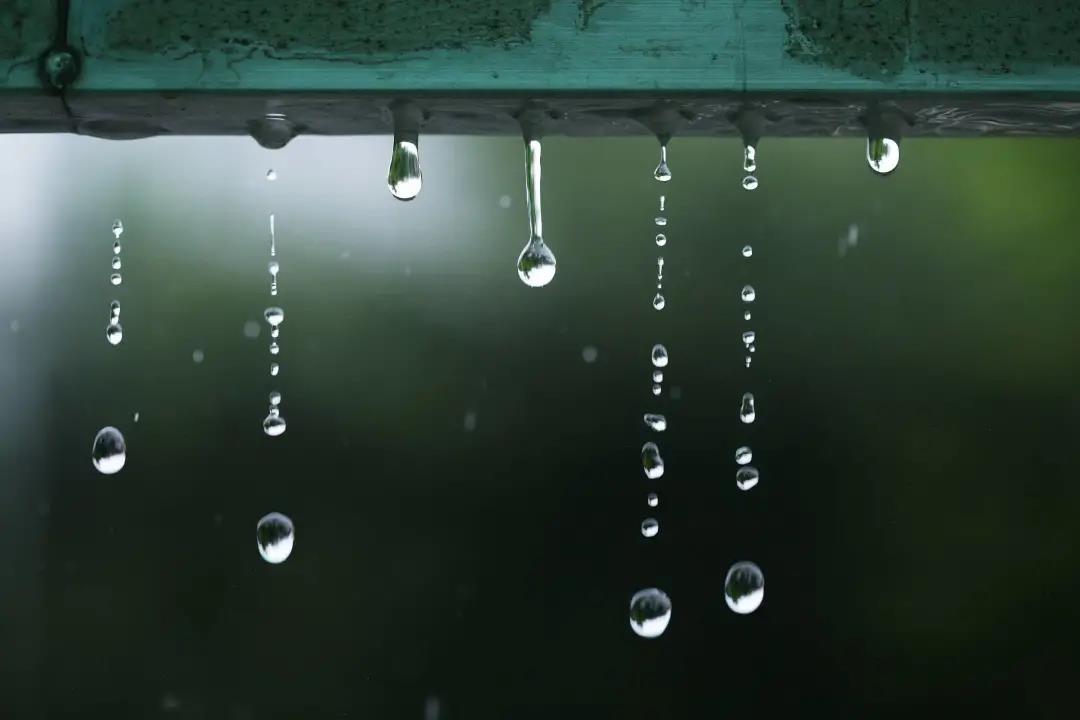 品读南京   听专家谈古代梅雨季节的那些事儿