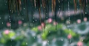 正式入梅:梅雨天湿哒哒,小心这些病!